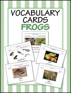 vocabulary cards frogs